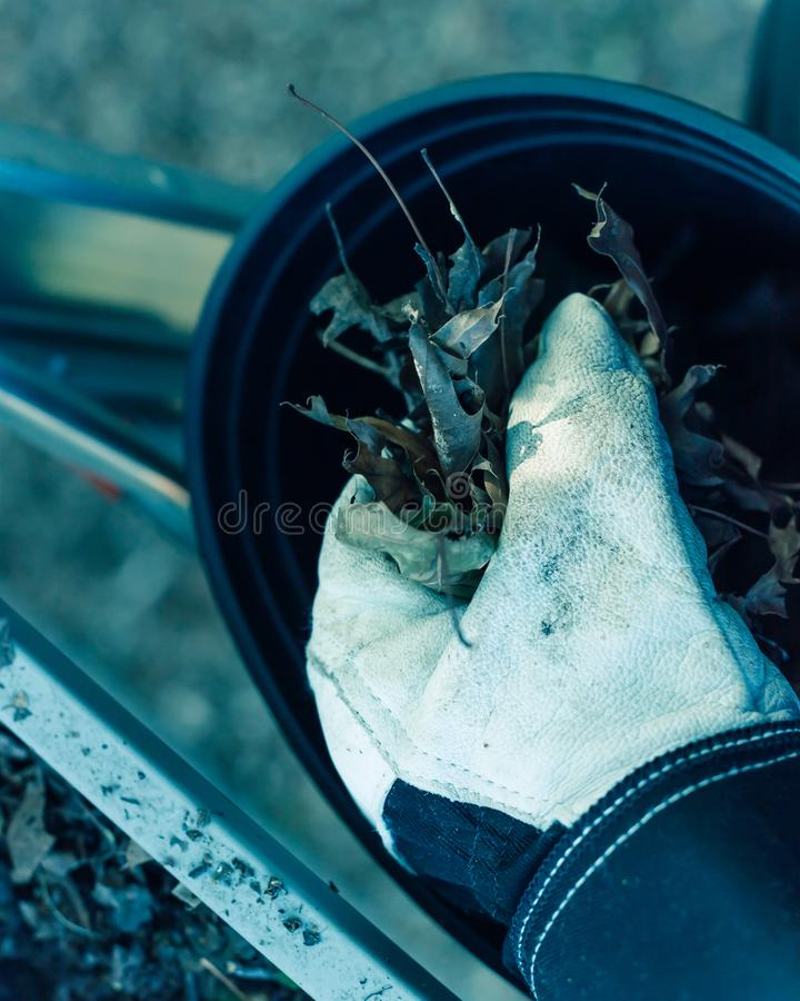 Filtered image close-up hand with gloves drop dried leaves and dirt into bucket from gutter cleaning. Vintage tone top view man hand in gloves holding dried royalty free stock photos