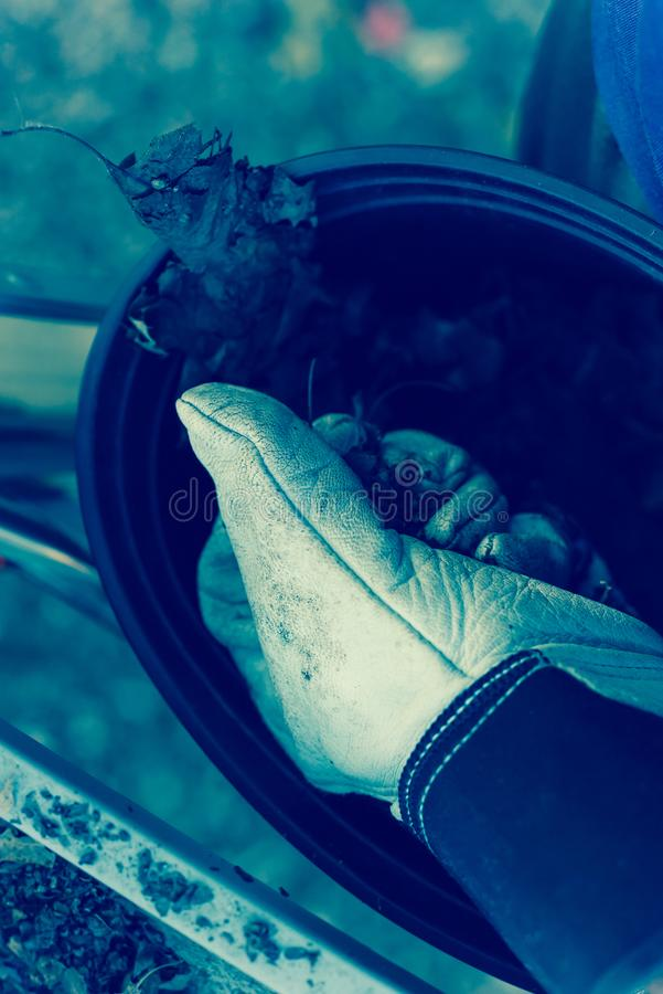 Filtered image close-up hand with gloves drop dried leaves and dirt into bucket from gutter cleaning. Vintage tone top view man hand in gloves holding dried royalty free stock image