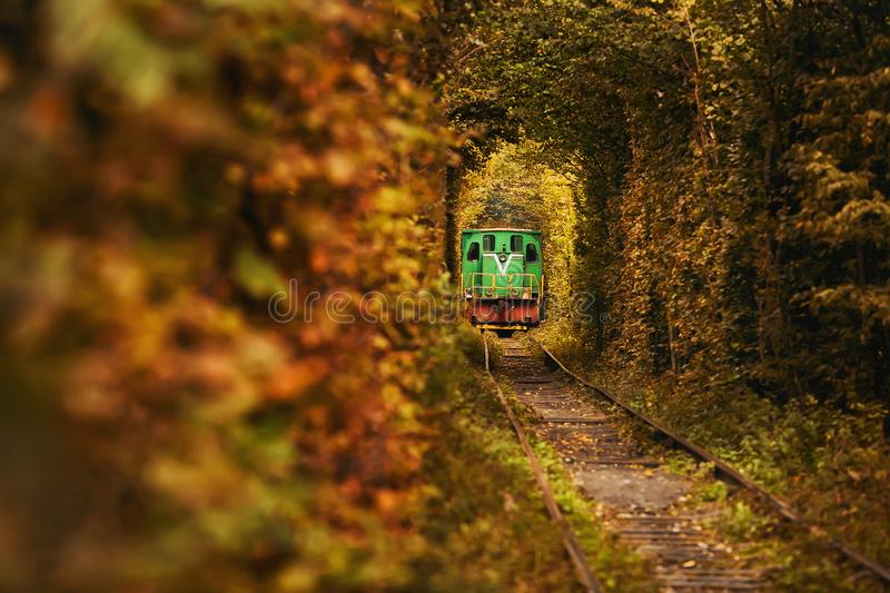 Vintage train on the beautiful tunnel. Natural tunnel of love in Ukraine. stock images