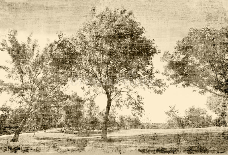 Vintage Trees. Vintage photo based painterly trees scene in sepia tones tapestry vector illustration