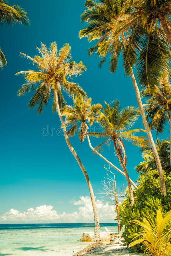 Vintage Tropical beach background. Crystal clear water and luxury water bungalows. Tropical tranquil background concept. Vintage style exotic scene stock images