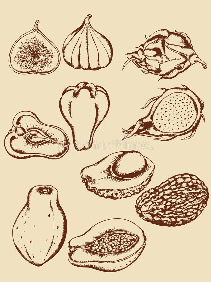 Vintage tropical fruits stock image