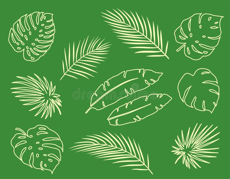 Vintage tropical set of palm leaves branches stock illustration
