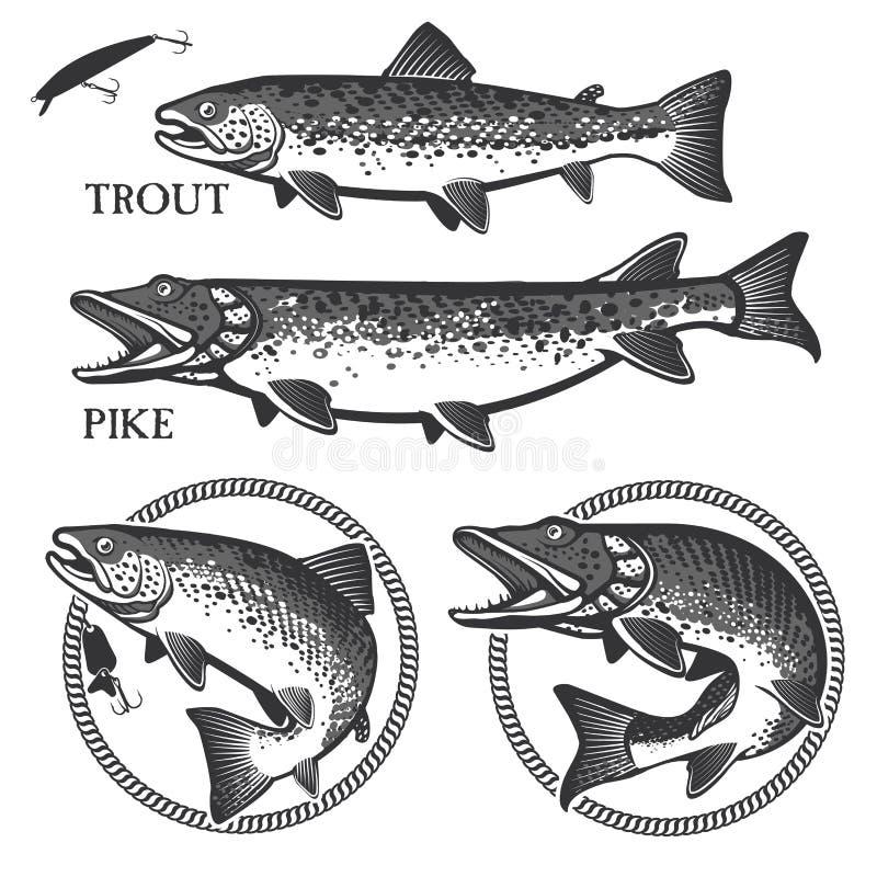 Vintage trout fishing emblems, labels and design royalty free illustration
