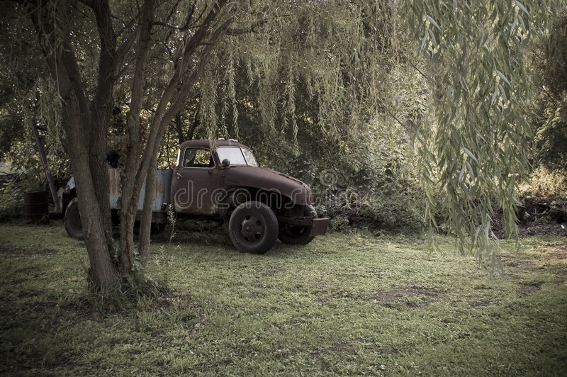 Vintage Truck. An old vintage truck underneath a weeping willow tree stock photos
