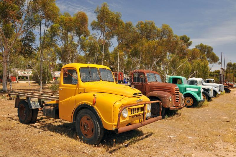 Vintage Trucks in Old Tailem Town Australia's grootste pioniers village, Tailem Bend, Australië stock afbeelding