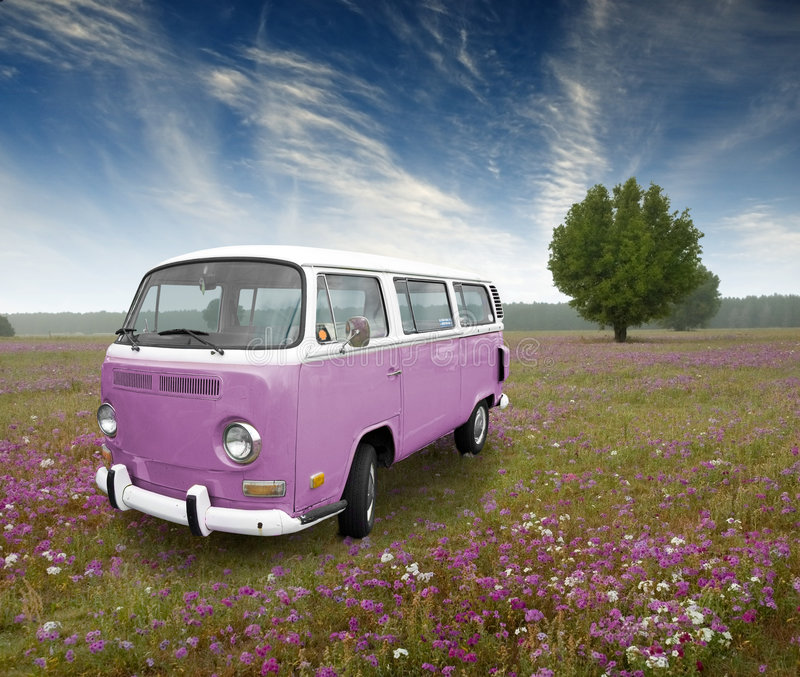 Vintage van. A lavendar classic VW bus automobile in a misty morning field with lavendar wild flowers
