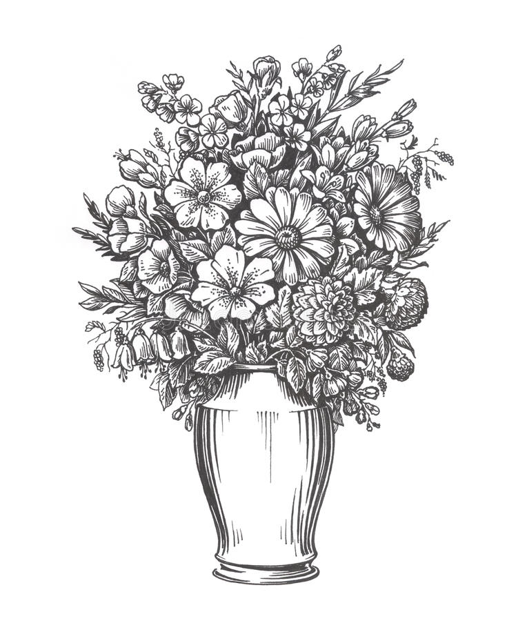 flower vase drawing images with Stock Illustration Vintage Vase Flowers Hand Drawn Sketch Illustration Isolated White Background Image79818107 on Rose Love Flower Drawing Hoontoidly Rose Love Drawing Images furthermore Flower Line Drawing Tumblr besides Stock Illustration Vintage Vase Flowers Hand Drawn Sketch Illustration Isolated White Background Image79818107 further Fillers And Other Flowers as well Grass Drawing.