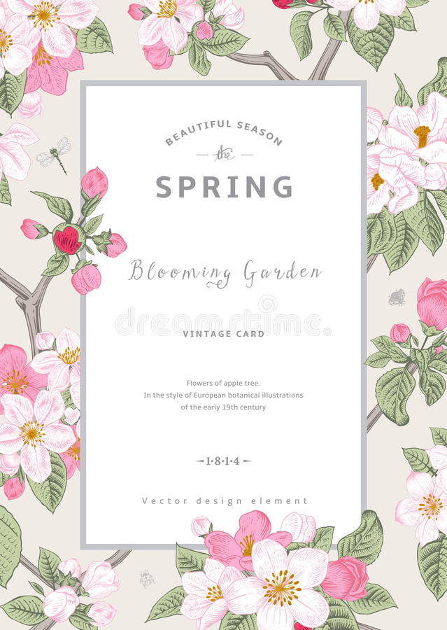 Free Vintage Vector Vertical Card Spring. Royalty Free Stock Photography - 49994947