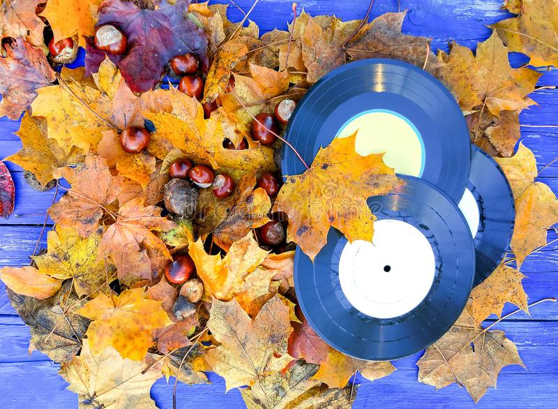 Vintage vinyl records on wooden background with fall autumn leaves and chestnuts. Vintage vinyl records on aged wooden background with fall autumn leaves and stock photo