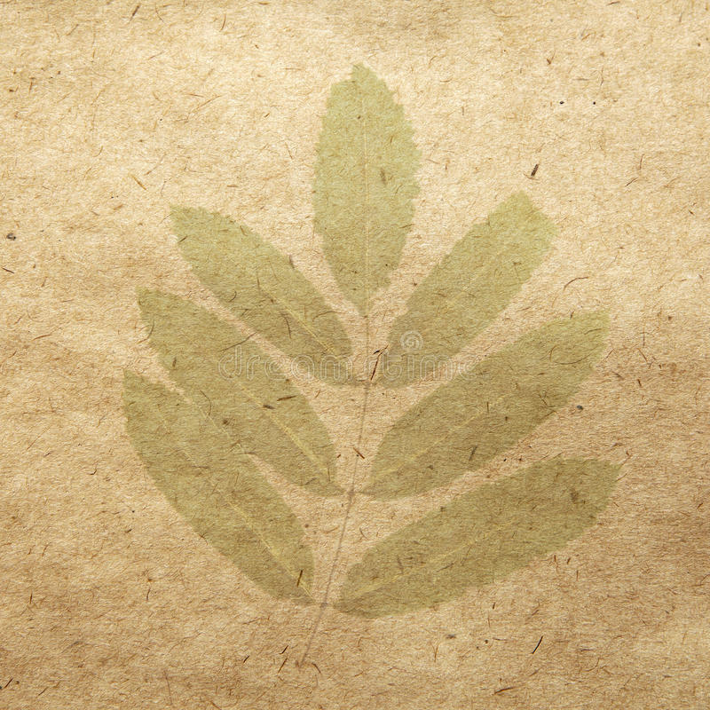 Vintage wallpaper. Background with leaf stock photo