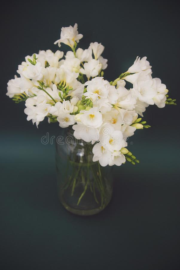 Download Vintage White Freesia Bouquet Of Flowers In Glass Vase On Black Background. Close Up. Stock Photo - Image of fresh, fragrant: 111619072