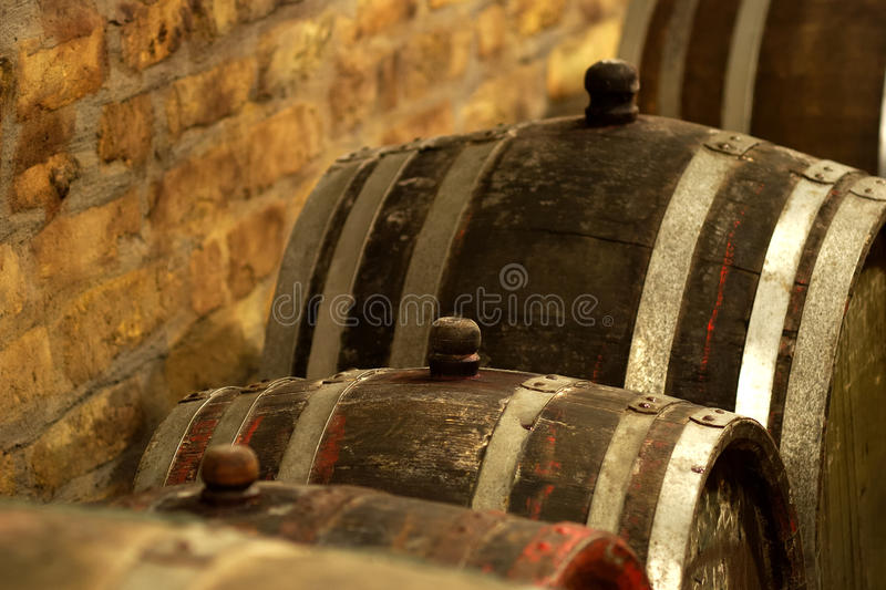 Vintage wine barrel in cellar royalty free stock photography