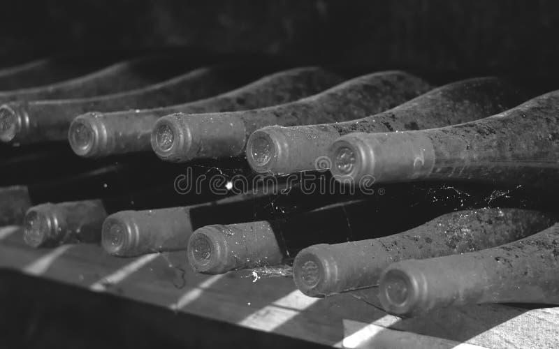 Vintage wine bottles in cellar stock image