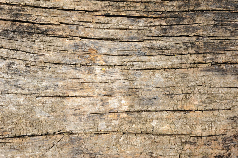 Download Vintage wood background stock image. Image of exterior - 10052247