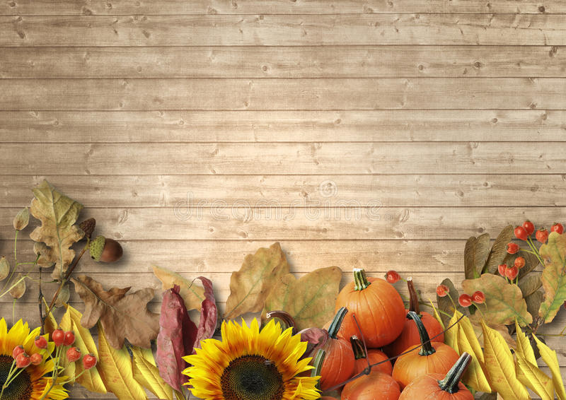 Vintage wooden background with autumn leaves, pumpkins, sunflowers, rowan. The border of the autumn harvest stock photo