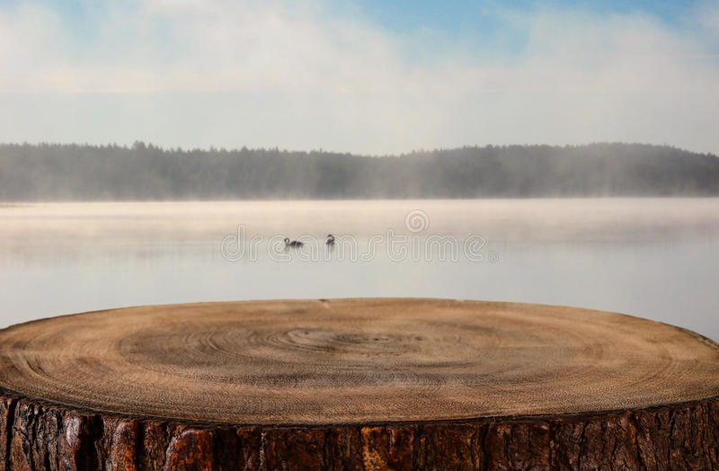 vintage wooden board table in front of abstract photo of misty and foggy lake at morning/evening. stock photo