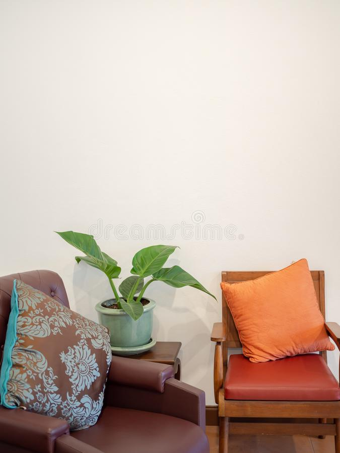 Vintage Wooden chair leather sofa. Wit tree in green pot on white wall background with space vertical style royalty free stock images