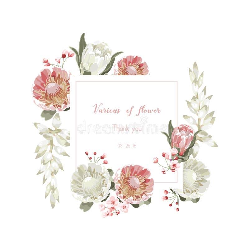 Vintage y tarjeta de felicitación floral lujosa del vector con las flores i ilustración del vector