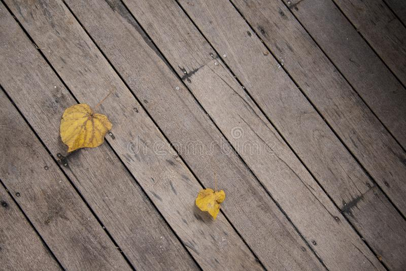 Vintage yellow leaf on wooden texture stock image