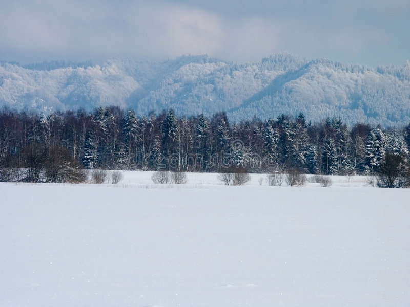 Download Vinter fotografering för bildbyråer. Bild av vitt, lopp - 285165