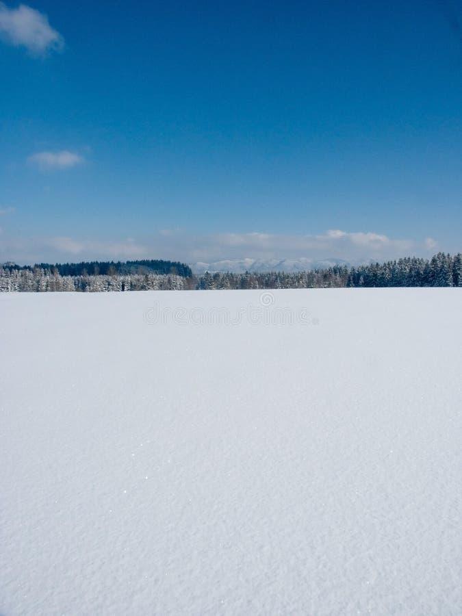 Download Vinter arkivfoto. Bild av natur, xmas, säsongsbetonat, vinter - 285166