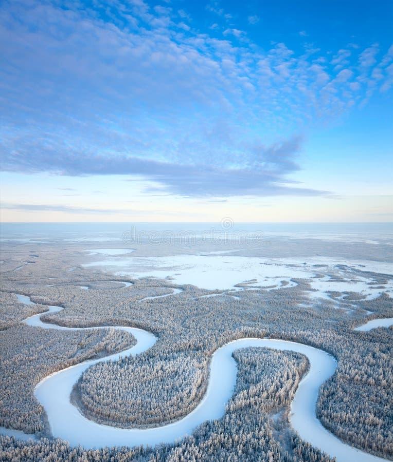 vinter för övre sikt för skogflod royaltyfri bild