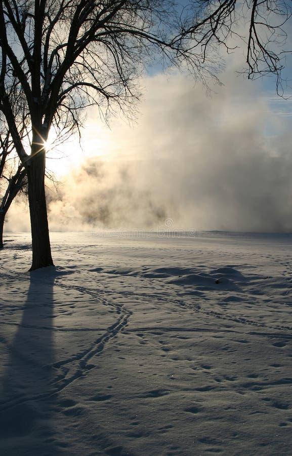 vinter för 9 dröm- serie arkivbild