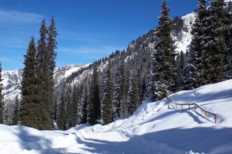vinter för bergvägsnow royaltyfri fotografi