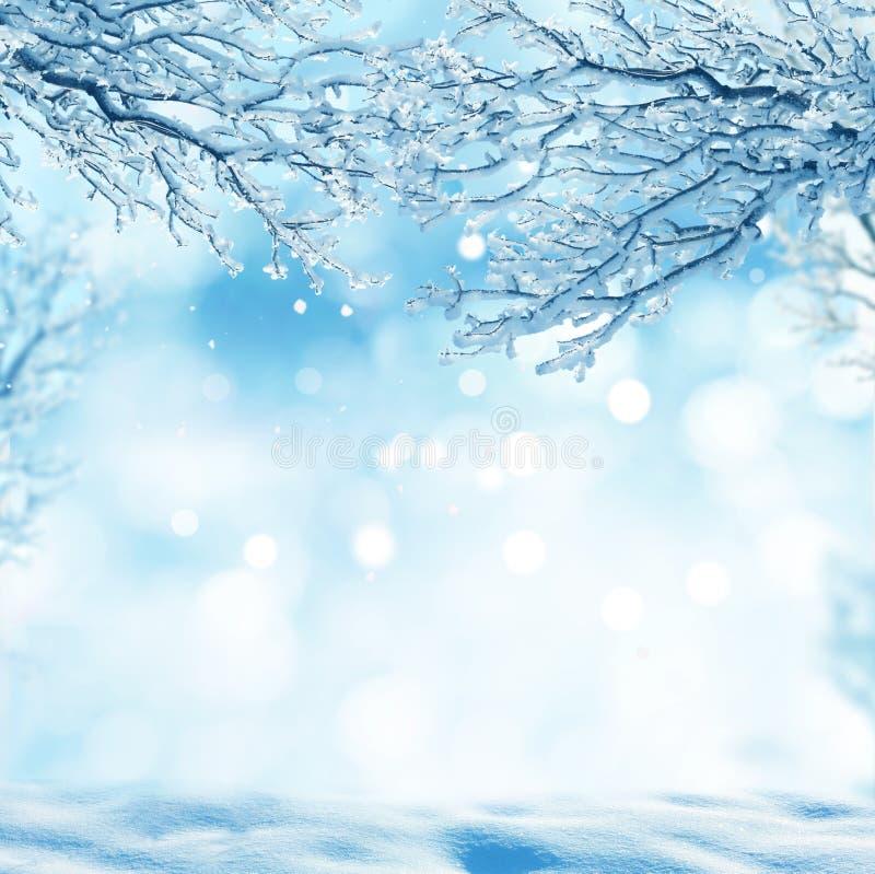 vinter för blåa snowflakes för bakgrund vit arkivfoto