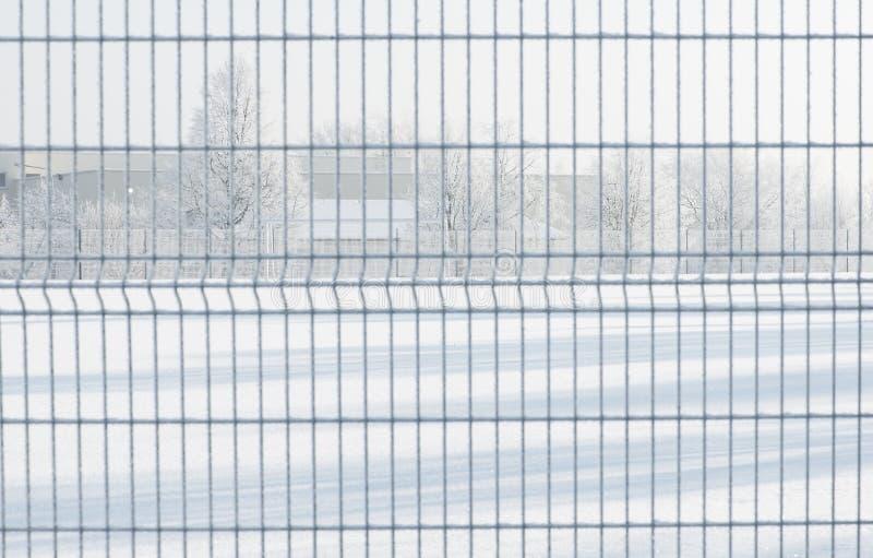 vinter för blåa snowflakes för bakgrund vit Djupfryst morgon Litauen royaltyfria bilder