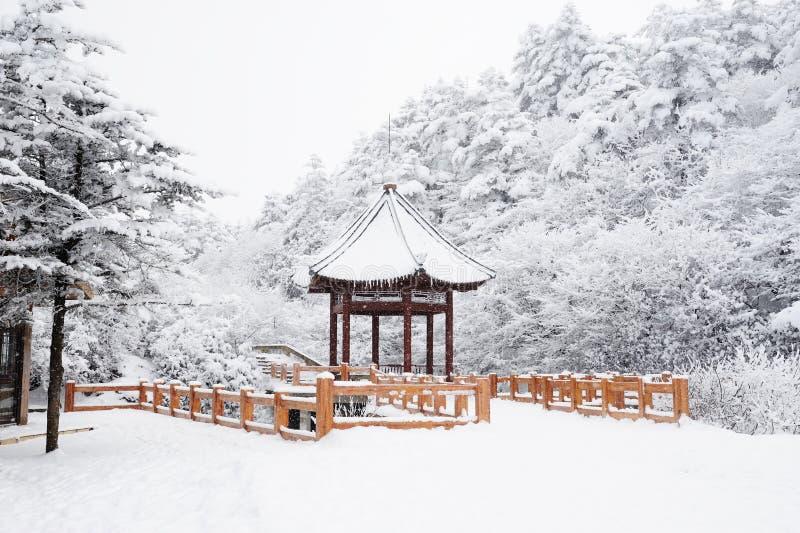 vinter för emeimt-plats royaltyfria foton