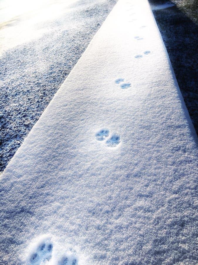 vinter för fotspårsnowtid arkivfoto