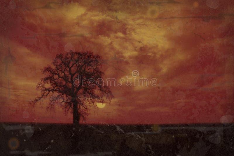 vinter för grungeoaktree