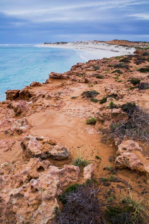 Vinter för kust för hav för Ningaloo revAustralien strand härlig fotografering för bildbyråer