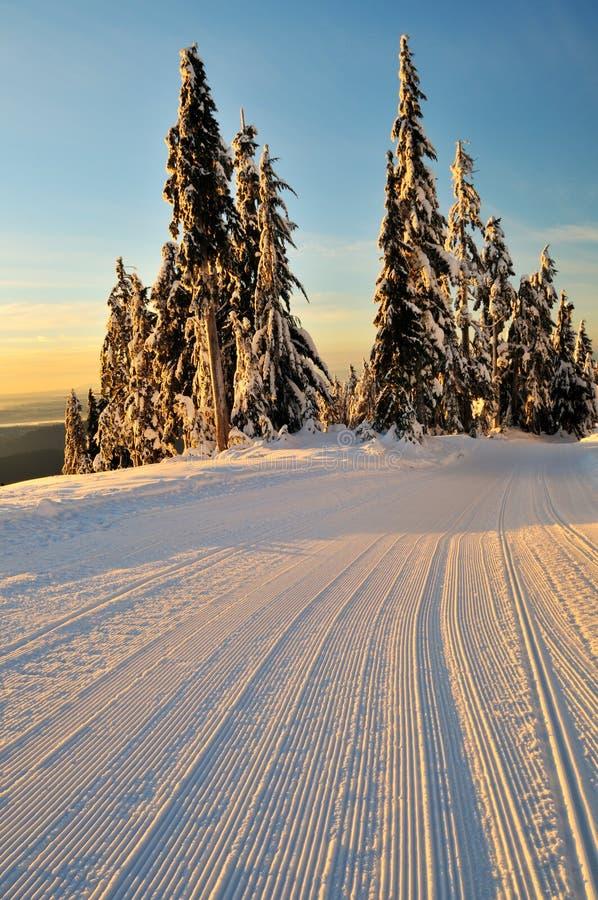 vinter för morgonmonteringsseymour royaltyfri fotografi