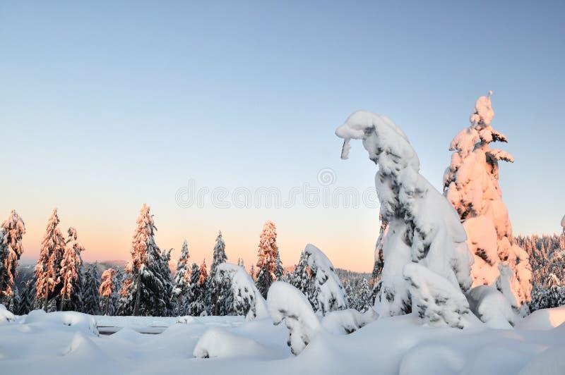 vinter för morgonmonteringsseymour arkivfoton