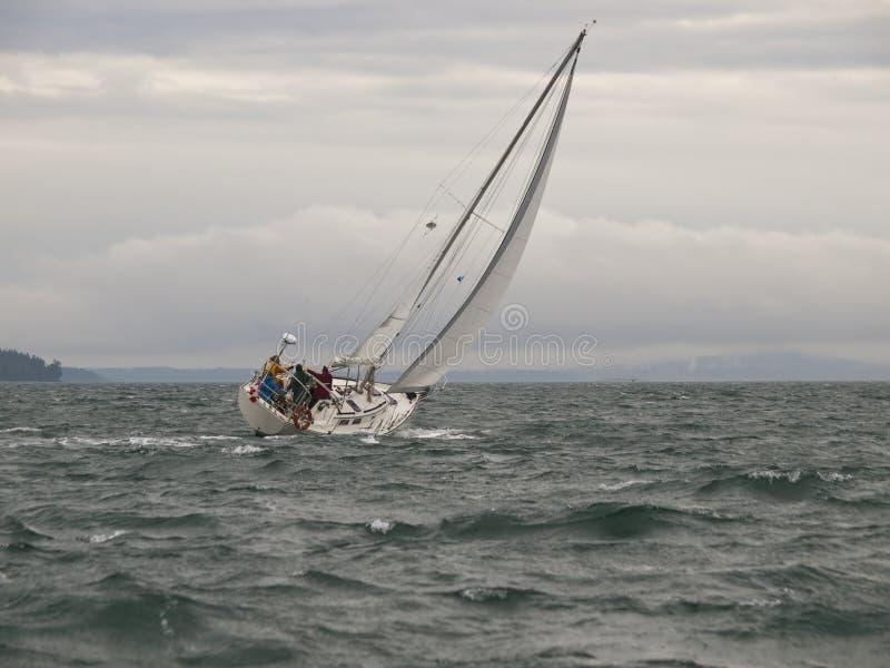 Download Vinter För Racesegelbåtstorm Fotografering för Bildbyråer - Bild av klyvare, nautiskt: 19784565