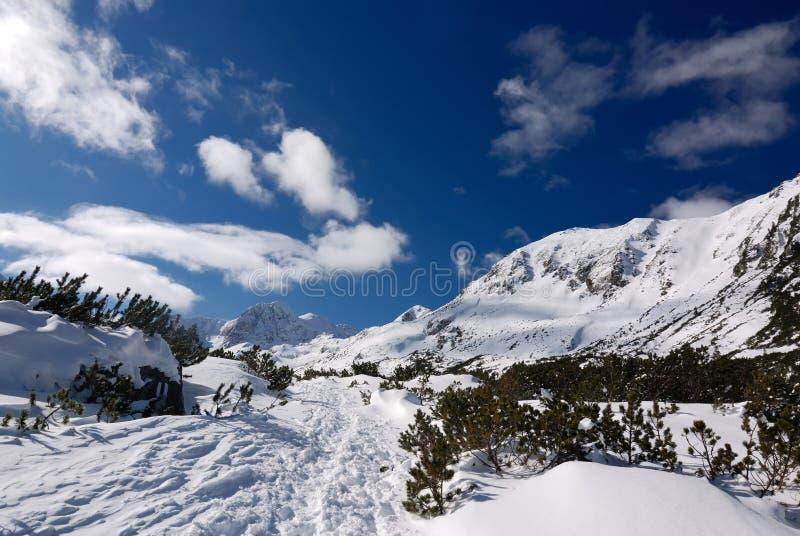 vinter för säsong för carpathians liggandeberg royaltyfri foto