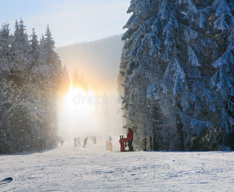 vinter för snow för lutning för skidåkning för glitterdamm skinande royaltyfria bilder