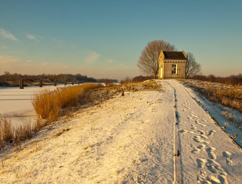 vinter för sun för eftermiddagliggande låg royaltyfri foto
