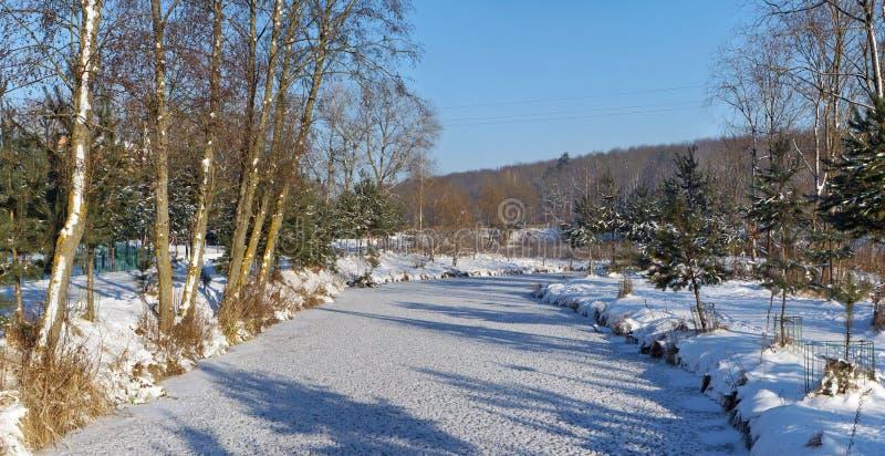 Vinter fryst flodlandskap royaltyfri bild