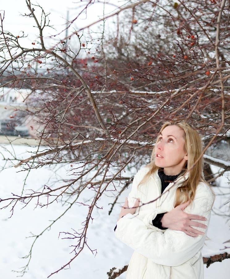Vinter Glasera den djupfrysta flickan nära ett träd royaltyfria bilder