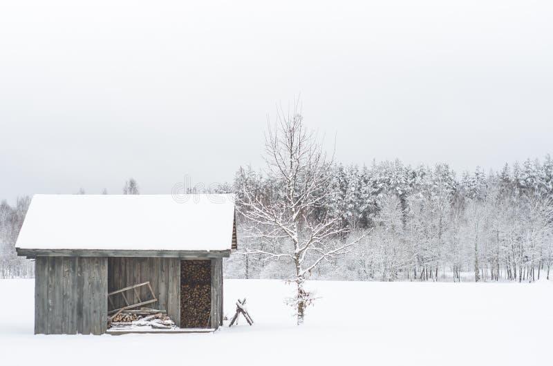 Vinter i bygden arkivfoton