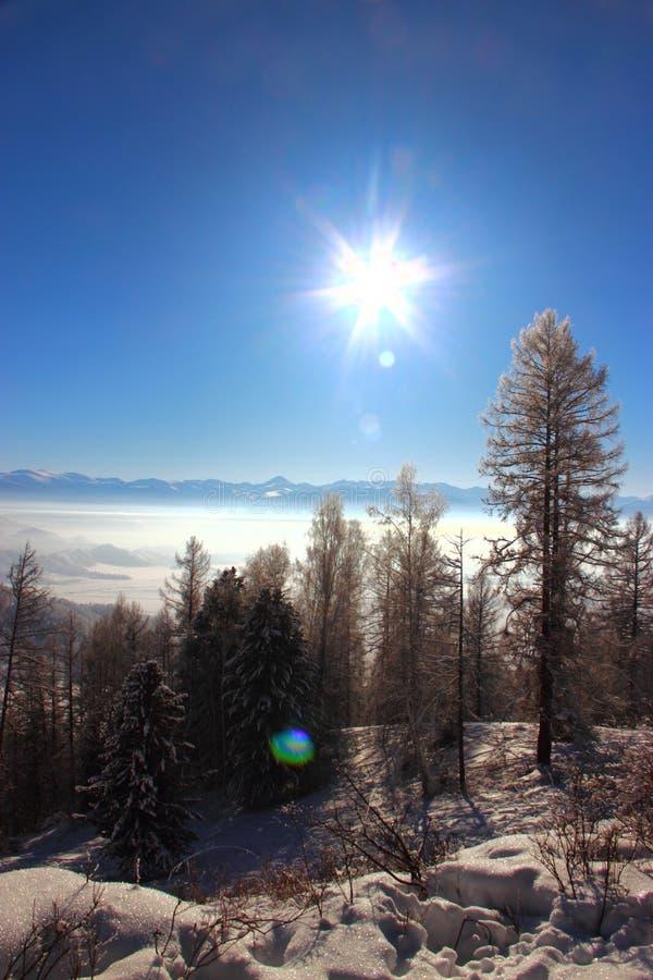Vinter i de Altai bergen royaltyfri foto