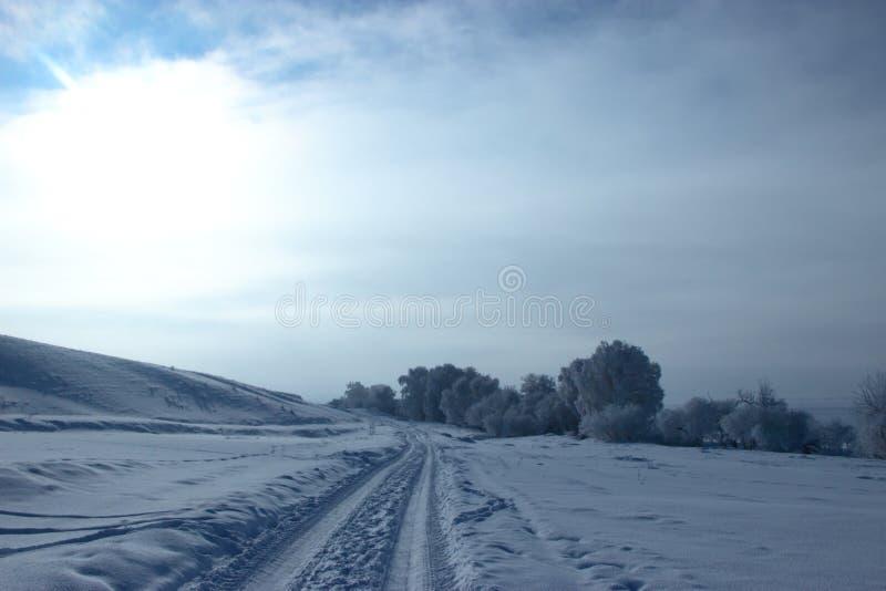 Vinter i de Altai bergen arkivbild