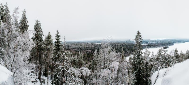 Vinter i den Finland synvinkeln från den andra högsta punkten i sydliga Finland arkivfoton