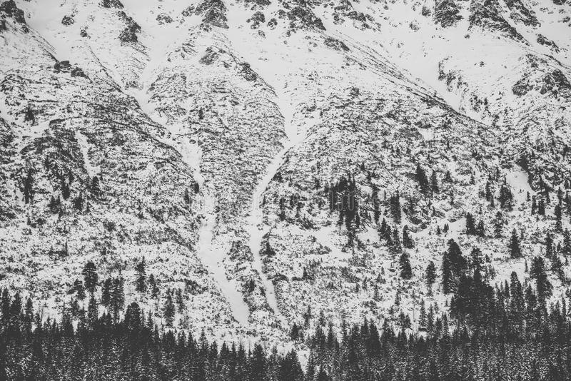 Vinter i höga Tatra berg royaltyfria foton