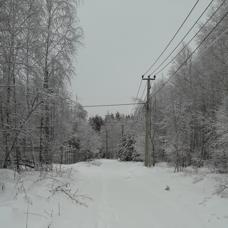 Vinter i Kyiven arkivfoton