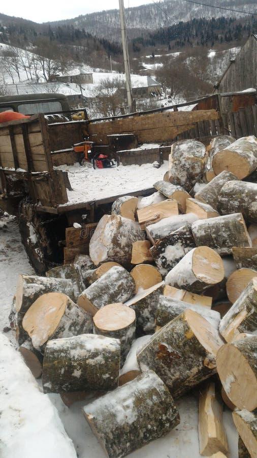 Vinter i mointainby royaltyfri foto